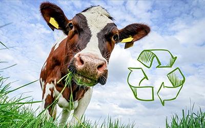 Pakk inn med resirkulert plast!